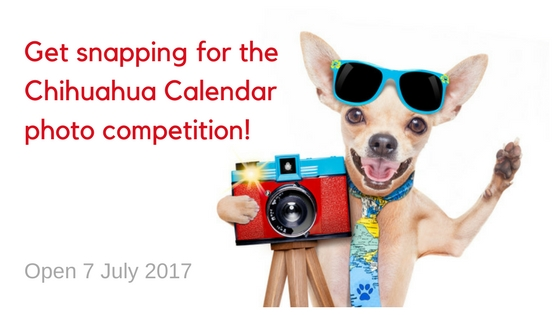 Calendar Photo Competition