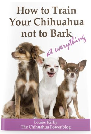 How to Train your Chihuahua Not to Bark (at everything)